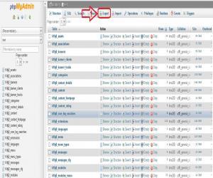 <b>انتخاب گزینه Export phpMyAdmin</b><br />انتخاب گزینه Export